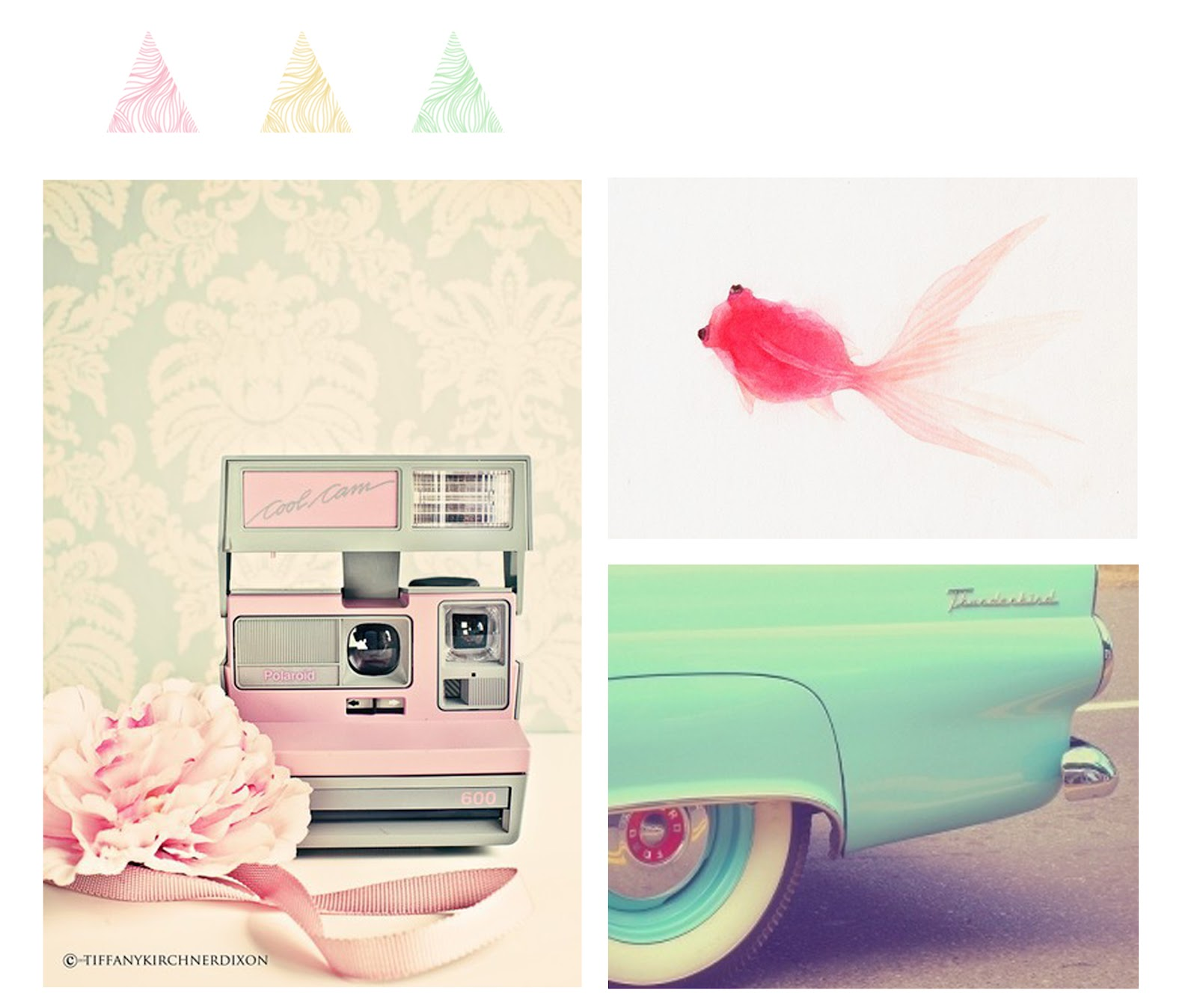 pastel-color-1-photos-things-pinterest-crecre2
