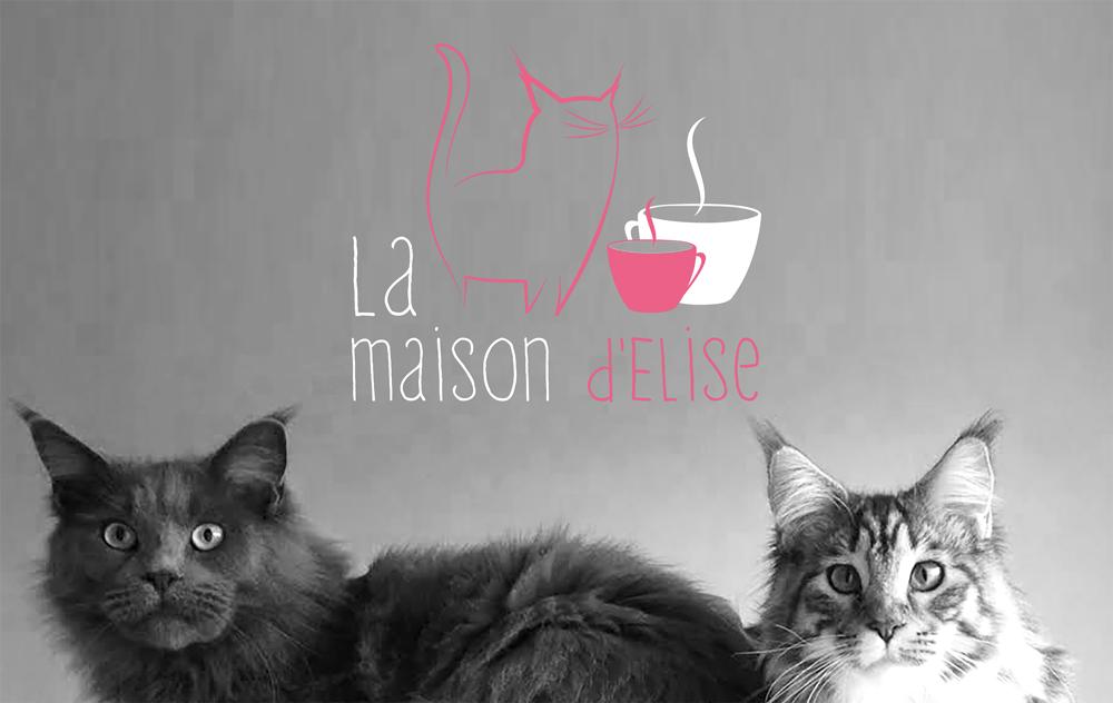 Bar à chats Nantes - Neko Café